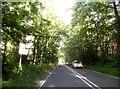 SU8666 : Nine Mile Ride, Bracknell by David Howard