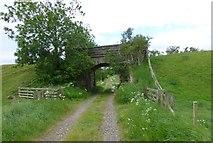 NU0024 : Bridge under dismantled railway line by Russel Wills