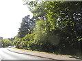 SU8566 : Nine Mile Ride, Bracknell by David Howard