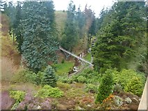 NU0702 : View of the Iron Bridge from a window on the west front of Cragside House by Derek Voller