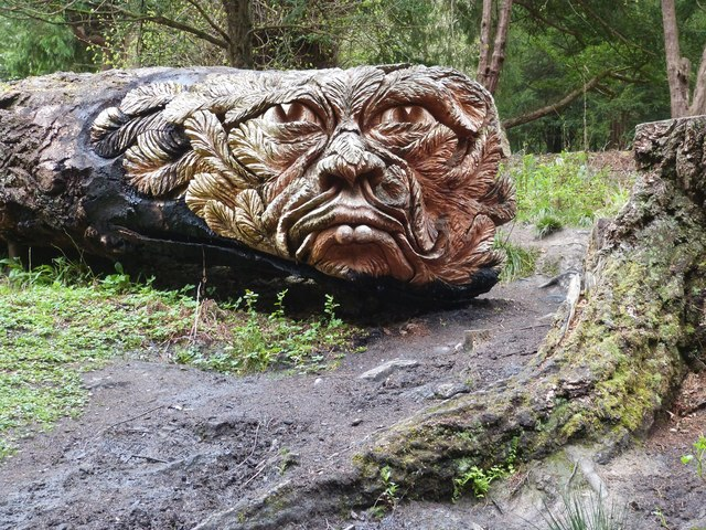 """"""" Douglas """" Carved from a fallen tree. possibly a Douglas Fir ?"""