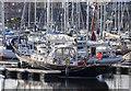 J5082 : Yacht 'Moonbeam of Argyll' at Bangor by Rossographer