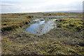SE0801 : Moorland pond on Westend Moss by Bill Boaden