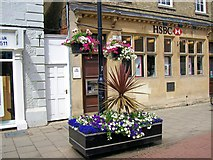 TF0920 : Floral displays at Bourne, Lincolnshire by Rex Needle