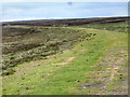 NZ0941 : Course of Dismantled Railway by Mick Garratt