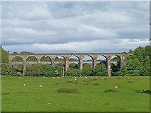 SJ2837 : Viaduct and aqueduct by Michael Dibb