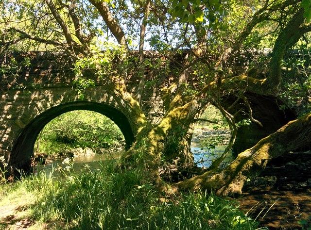 The Bridge at Baybridge
