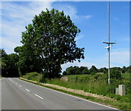ST7881 : Roadside weather station on a pole west of Acton Turville by Jaggery