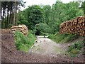 SK0443 : Timber stacks by the Staffordshire Way in Stoney Dale by Ian Calderwood