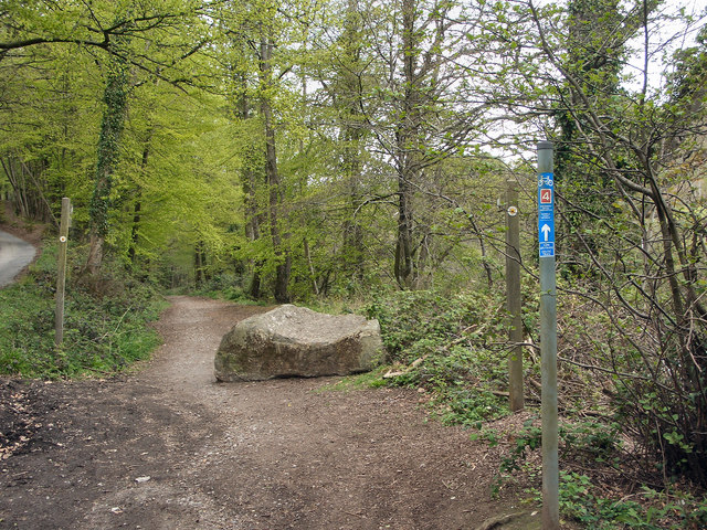 The start of a cycle path, Margam Country Park (2)