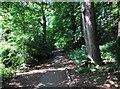SO8577 : Footpath in Hurcott Wood leading to car park, near Kidderminster by P L Chadwick