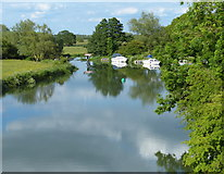 SP4408 : River Thames viewed from the Swinford Toll Bridge by Mat Fascione