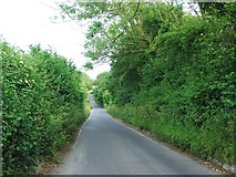 TR2647 : Coldred Road, Shepherdswell by Chris Whippet