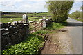 NY6516 : Road past sheep pasture towards King's Meaburn by Roger Templeman