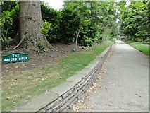 TM1644 : The Mayor's Walk, Christchurch Park, Ipswich by Adrian S Pye