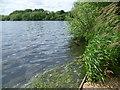 TQ2287 : Alongside the Brent Reservoir by Marathon