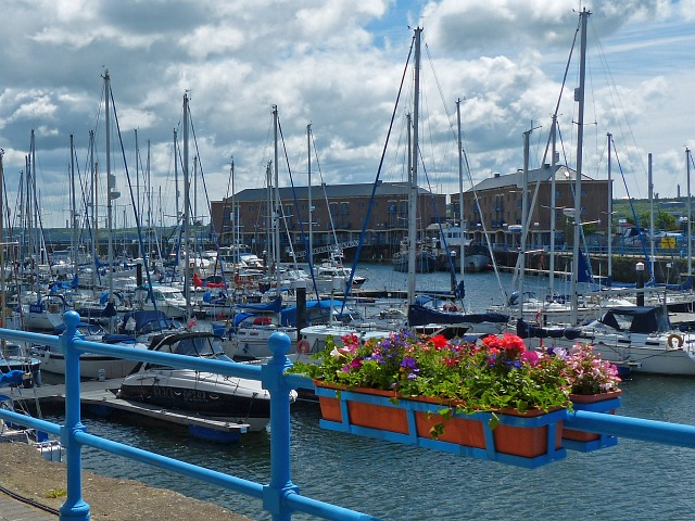 Almost all blue, Milford Haven Marina