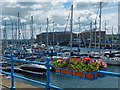 SM9005 : Almost all blue, Milford Haven Marina by Robin Drayton