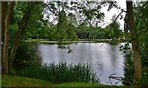 TL7835 : Hedingham Castle and Gardens: The lake from the east by Michael Garlick