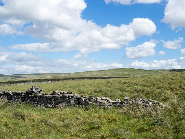Grassy moorland beyond ruined wall