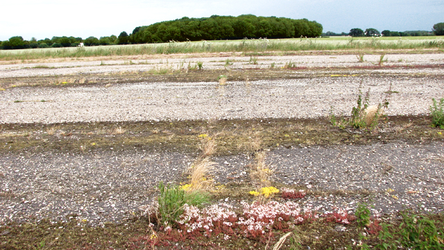 View across the main runway
