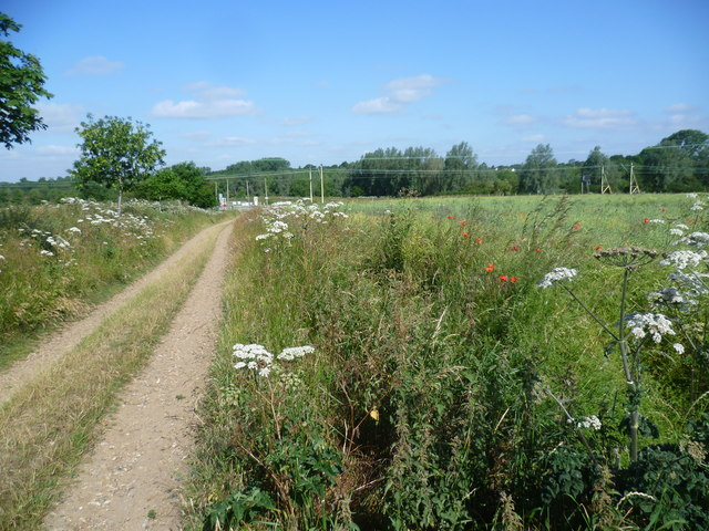 Footpath to the railway