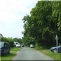 SE5159 : Back Lane, Newton-on-Ouse by David Smith