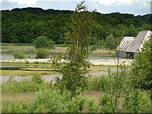 SD5830 : Meadow Lake and Visitor Village, Brockholes Nature Reserve by David Dixon