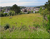 SN5981 : Pasture near the Library, Aberystwyth by Dylan Moore