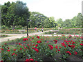 TQ3876 : Rose garden in Greenwich Park, with paths  by Stephen Craven