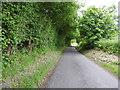 SU3067 : Minor road past Trindledown Copse by Vieve Forward