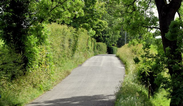 The Lower Quilly Road, Dromore (June 2015)
