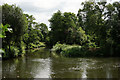 TQ0760 : River Wey at Byfleet by Peter Trimming