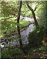 SJ9665 : The River Dane above the bridge, Danebridge by Robin Stott