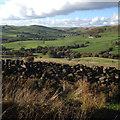 SJ9765 : North to Wildboarclough from near Hangingstone Farm above Danebridge by Robin Stott