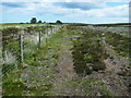NZ9003 : Diverted footpath, Low Moor by Humphrey Bolton