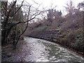 ST1797 : Riverbank reinforcement, Blackwood by Jaggery