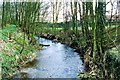 TF0216 : The West Glen River at Careby, near Bourne, Lincolnshire by Rex Needle