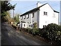SO5428 : Bark House, Hoarwithy by Jaggery