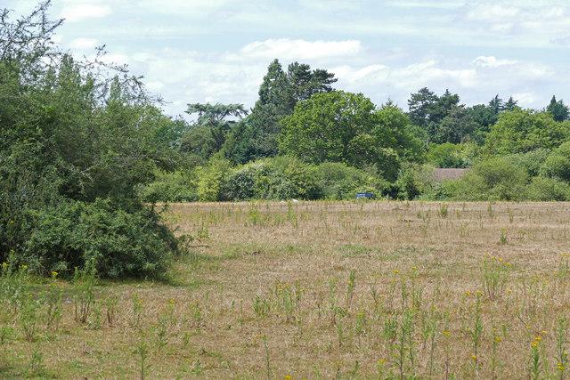 Field near Stoke Green