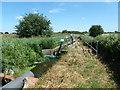 TQ6186 : Sewage works final effluent sampling point by Robin Webster
