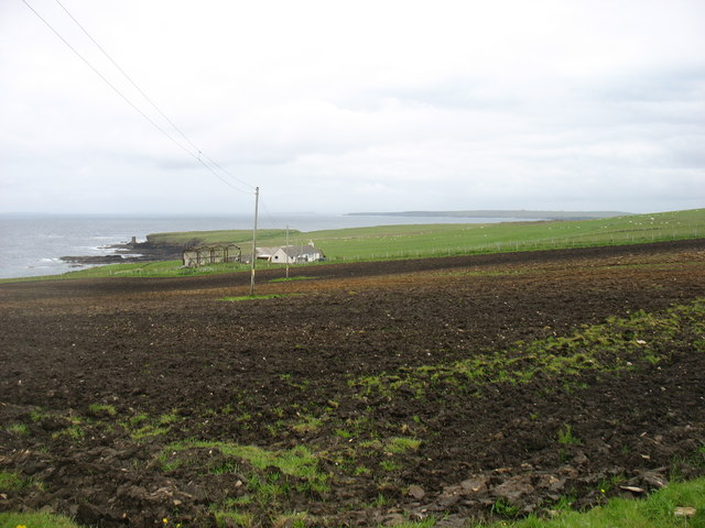Maligoe Farm, East Mey