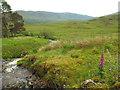 NN2642 : Allt Chaorach, near Bridge of Orchy by Malc McDonald