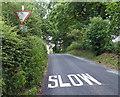 SK0620 : Hollow Lane near Hurst Wood Farm by Mat Fascione