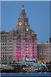 SJ3390 : Light show, Liver Building, Liverpool by El Pollock