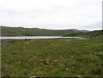 NC4551 : The southern end of Loch Hope by David Purchase