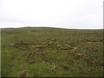 NC5138 : Lower slopes of Cnoc an Alltain Leacaich by David Purchase