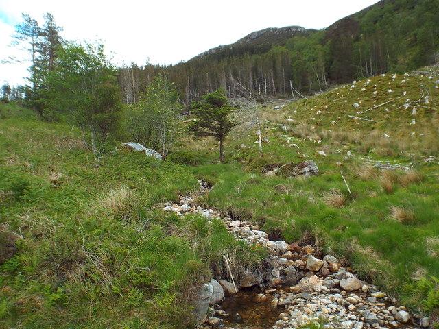 Stream on Meall na h-Airigh, Glenfinnan