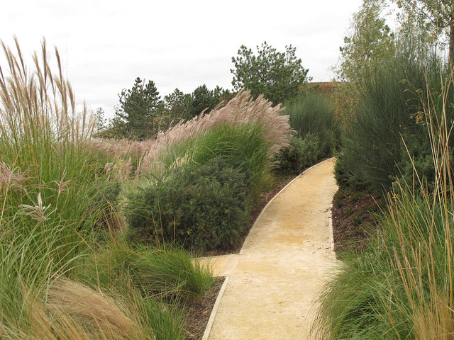 Path through a garden in the Olympic Park