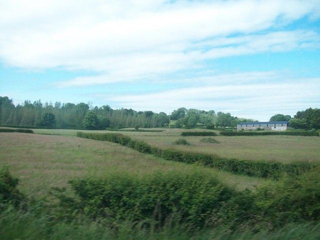Farm buildings west of the A24